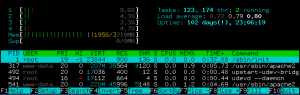 Uptime with Htop